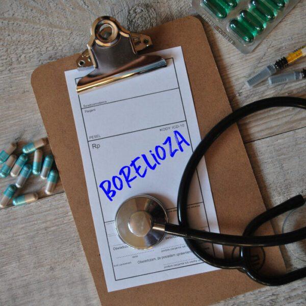 Borelioza-4